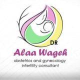 دكتور علاء وجيه امراض نساء وتوليد في الدقهلية المنصورة
