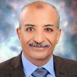 دكتور مجدي عبدالهادي اضطراب السمع والتوازن في الاسكندرية ميامي