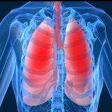 دكتور وائل عمارة حساسية الجهاز التنفسي في الجيزة العجوزة